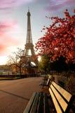 De Toren van Eiffel in de lente, Parijs, Frankrijk Royalty-vrije Stock Foto