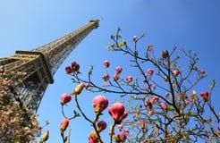 De Toren van Eiffel in de lentetijd Stock Afbeelding