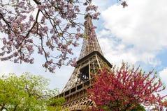 De toren van Eiffel die door de de lentebloemen wordt omringd stock fotografie