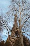 De toren van Eiffel die onder de bomen wordt verborgen. Royalty-vrije Stock Foto's