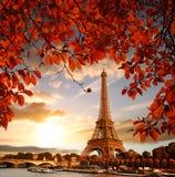 De Toren van Eiffel met de herfstbladeren in Parijs, Frankrijk stock fotografie