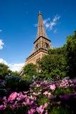 De Toren van Eiffel met roze bloemen in voorgrond Stock Foto