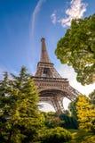 De toren van Eiffel onder de bomen in de zomertijd stock afbeeldingen