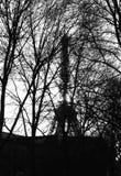 De toren van Eiffel - Parijs Stock Afbeeldingen