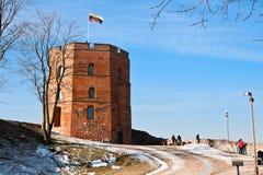 De Toren van Gediminas in Vilnius Stock Fotografie
