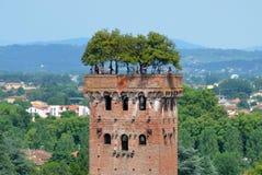 De toren van Guinigi stock foto's