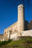De toren van Herman in Tallinn `s Oldtown Estland Stock Fotografie