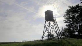 De Toren van het vogelhorloge stock video