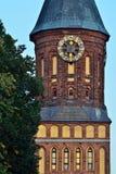 De toren van Koenigsberg-Kathedraal tegen de blauwe hemel Gotisch van de 14de eeuw Kaliningrad, Rusland stock fotografie