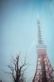 De Toren van Tokyo | Reis in Japan op 30 Maart, 2017 Stock Afbeeldingen