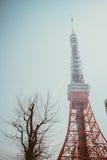 De Toren van Tokyo | Reis in Japan op 30 Maart, 2017 Royalty-vrije Stock Fotografie