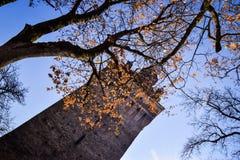 De toren van de versterkte Evangelische kerk in Saschiz stock foto's