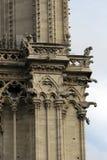 De torendetail van Notre Dame. Stock Afbeelding