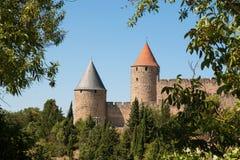 De torens van de citadel van Carcassonne door bomen op een zonnige dag worden ontworpen die Stock Foto's