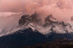 De torens van Cuernos bij dageraad Torres del Paine, Argentinië Stock Foto