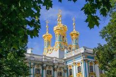 De Torens van het Paleis van Pushkin Stock Foto's