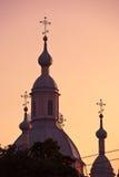De torenspitsen van de kathedraal Stock Foto's