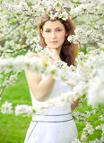 De tot bloei komende lente Stock Foto's