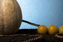 De Touwtrekwedstrijd van vruchten stock afbeelding
