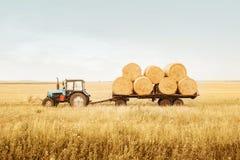 De tractor verwijdert balen van hooi uit het gebied na oogst het Schoonmaken korrelconcepten Voltooiing van het landbouwbedrijf stock afbeelding