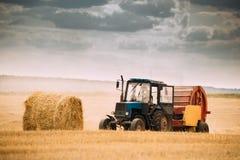De tractor verzamelt Droog Gras op Straw Bales In Summer Wheat-Gebied royalty-vrije stock foto's