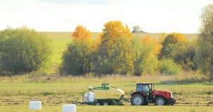 De tractor verzamelt Droog Gras op Straw Bales In Summer Wheat-Gebied Speciale Landbouwmachine Hay Bales, Hay Making stock video