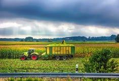 De tractor verzamelt op het gebied een gewas van graan Oogst landbouwmachines stock afbeeldingen
