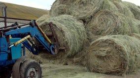 De tractor zet hooi in een grote stapel stock footage