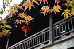 De traditionele Chinese bouw naast de gele bladeren Stock Fotografie