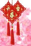 De traditionele Chinese ornamenten van het Nieuwjaar Stock Afbeeldingen
