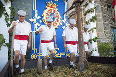 De traditionele druif stampt in Sherry Royalty-vrije Stock Foto's