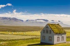 De traditionele Ijslandse bouw - landbouwbedrijf Glaumbar. Stock Afbeeldingen