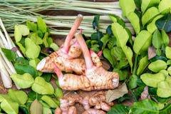 De traditionele Thaise ingrediënten van het kruidvoedsel royalty-vrije stock afbeeldingen