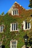 De traditionele universitaire bouw Royalty-vrije Stock Foto's