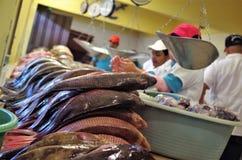 De traditionele vertoning van de Zeevruchtenmarkt in Tegucigalpa een plaathoogtepunt van verse garnalen stock afbeeldingen