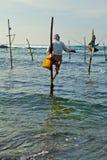 De traditionele visser van Srilankan op stok in de Indische Oceaan Royalty-vrije Stock Foto's