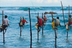 De Traditionele Visserij van Sri Lanka van de Vissers van de stelt Stock Foto's