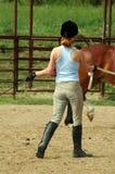 De Trainer van het paard Stock Foto