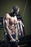 De Training van de gymnastiek Stock Fotografie