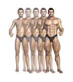 De Transformatie van de bodybuilder Royalty-vrije Stock Afbeeldingen