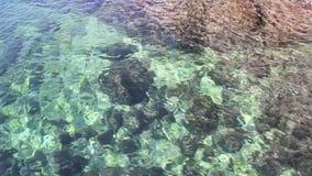 De transparante textuur, de achtergrond, het patroon en het behang van de zeewateraard Speelkleuren in het landschap van de water stock footage
