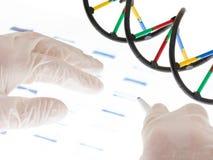 De transparantie van DNA van Examing Royalty-vrije Stock Afbeelding