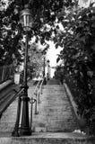 De trap van Montmartre in Parijs Royalty-vrije Stock Foto's