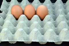 De tre äggen Royaltyfria Bilder