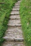 De treden van de steen   Stock Afbeelding