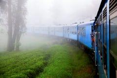 De trein in de mist in de bergen van Sri Lanka Omgeving Nuwara Eliya royalty-vrije stock foto's