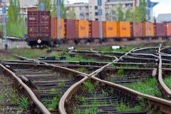 De trein die van de lading op groen licht wacht Stock Fotografie