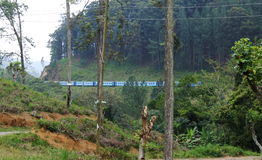 De trein is gaand throug landschap dichtbij Ella Royalty-vrije Stock Foto's