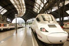 De trein van de hoge snelheid en lokale treinen Royalty-vrije Stock Afbeeldingen
