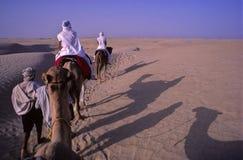 De trein van de kameel Stock Fotografie